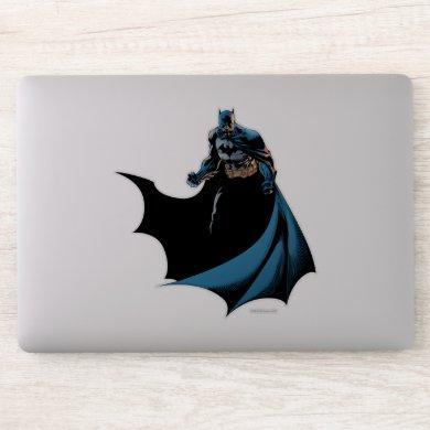 Batman whip around sticker