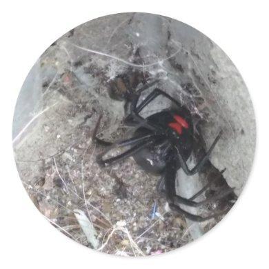 Black Widow Sticker-small Classic Round Sticker