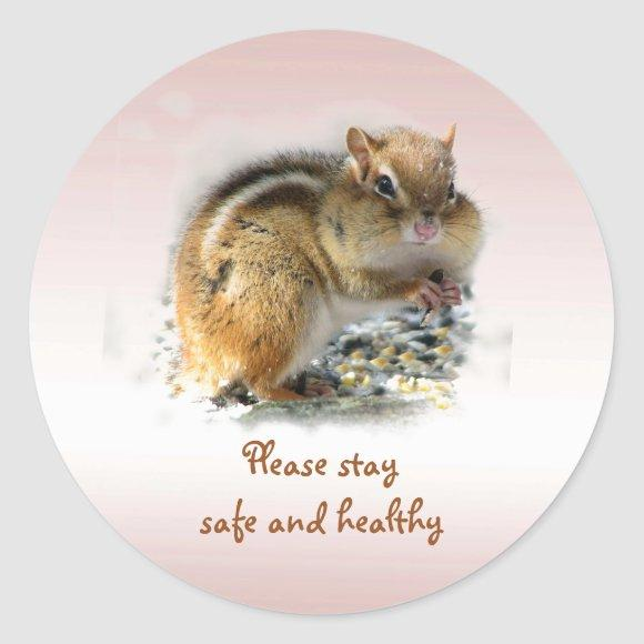 Chipmunk Says Please Stay Safe and Healthy Sticker