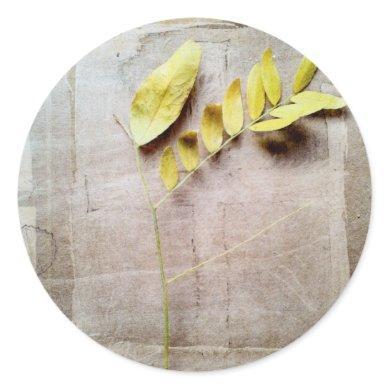 Herbarium V Classic Round Sticker