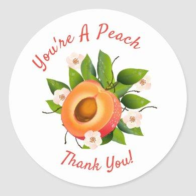 Peach Fruit Canning | Thank You Envelope Seal