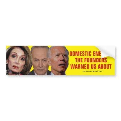 Pelosi Schumer Biden Domestic Enemies Bumper Sticker