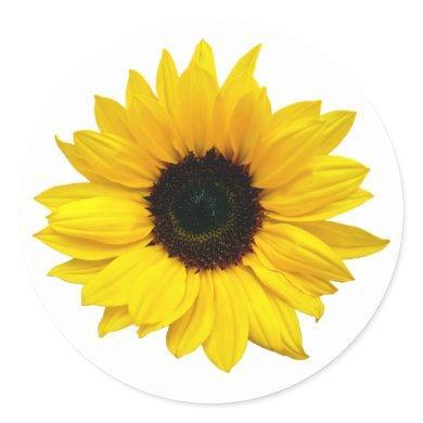 Yellow Sunflower Flower Envelope Seal Stickers
